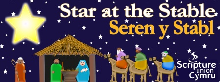 Star at the stable banner